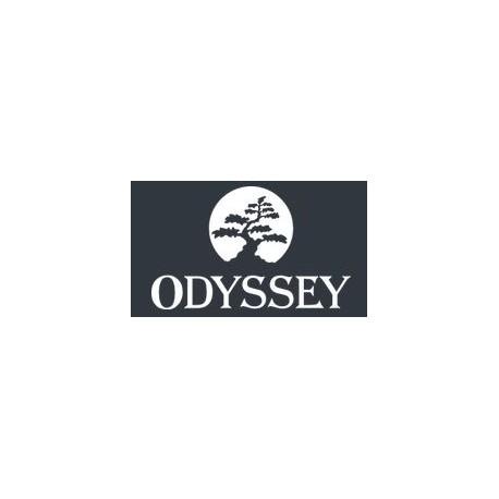 Odyssey Hotel Wellness & SPA - Dąbrowa / Kielce