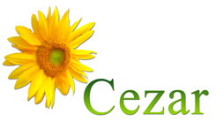 http://www.sauna-cezar.pl/